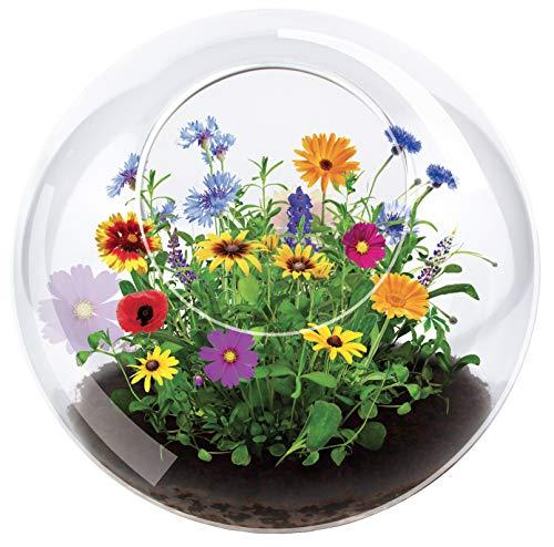 Unique Gardener Grow Your Own Wild Flower