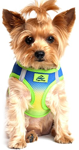 Reflective Mesh Sport Harness - ULTRA CHOKE FREE STEP IN REFLECTIVE DOG HARNESS ★ AMERICAN RIVER OMBRE COBALT SPORT ★ ALL SIZES (Large)