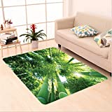 Nalahome Custom carpet on Low Angle View of Bamboo Tree Tops Asian Zen Tranquil Lands Jungle Meditation Spa Theme Green area rugs for Living Dining Room Bedroom Hallway Office Carpet (5' X 8')