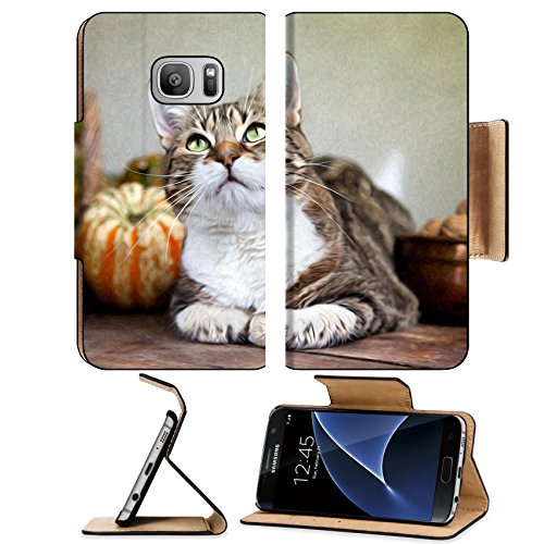 Autumn Walnut (MSD Samsung Galaxy S7 Flip Pu Wallet Case IMAGE 10903165 Autumn themed Cat portrait with Pumpkins and Walnuts)