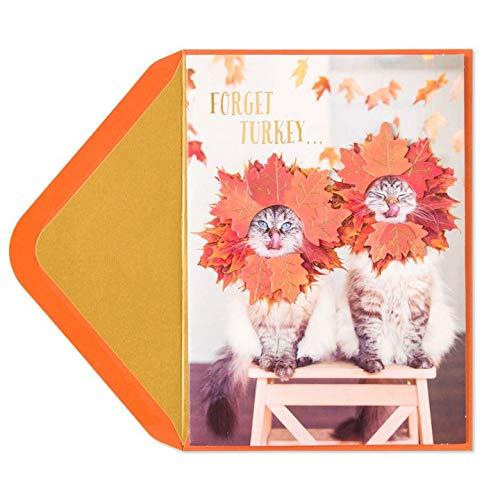 Thanksgiving Card Couple of Hams Cats w Fall - Cat Ham