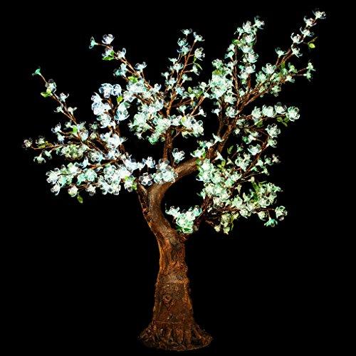Thorn Garden Lighting