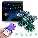 ELlight Outdoor String Lights, Dream Color 35ft LED String Lights with APP, Waterproof 100 LED Dimmable Color Changing Hanging Lights for Patio Wedding Party Holiday