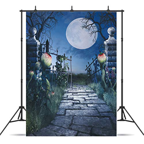 Dudaacvt 5ft x 7ft Halloween Photography Backdrops Moon Backdrop Photo Fantasy Scenery Old Gate Stone Road Background Studio Q0290507 … ()