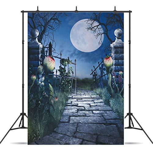 Dudaacvt 5ft x 7ft Halloween Photography Backdrops Moon Backdrop Photo Fantasy Scenery Old Gate Stone Road Background Studio Q0290507 … -