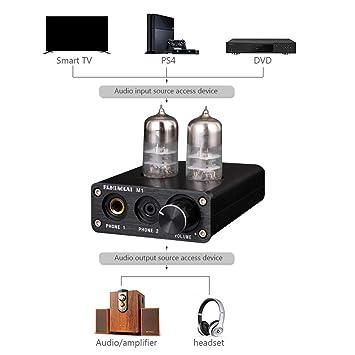 ICQUANZX - Amplificador de potencia para ordenador de ...