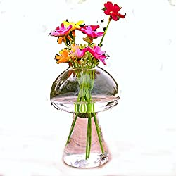 Oneoftheworld 1pc Vase Flower Plan Home Decoration Supplies Dining Accessories (TypeV7)