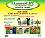 Lawnlift Ultra Concentrated (Green) Grass Paint
