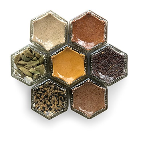 INDIAN | Seven Organic Indian Seasonings in Gneiss Spice Small Magnetic Jars | Cooking Gift Set (7 Jars, Silver Lids)