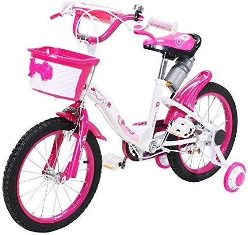 actionbikes BICICLETA INFANTIL DAISY A Partir De 3 años 16 pulgadas Rosa Bicicleta infantil niños niñas Chicos Bicicleta: Amazon.es: Deportes y aire libre