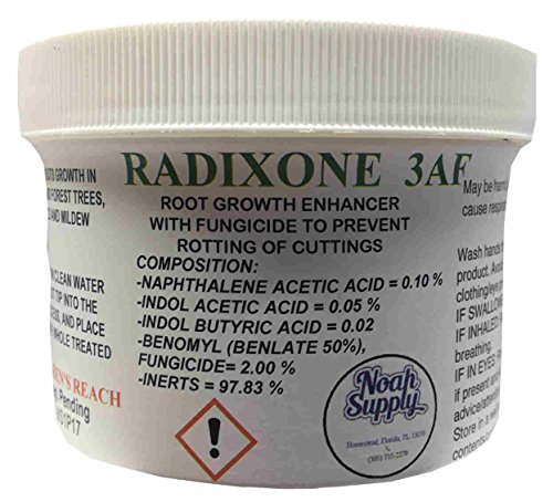 Rooting Powder with Fungicide, Root Growth Enhancer, Radixone 3AF, 8.0 oz Jar -