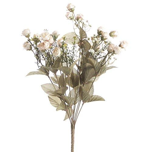 Pale Antique Rose - 9
