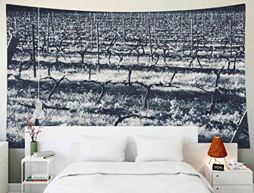 (Bisead Beach Tapestry, Map Art Tapestry Vineyard Sunset Near France Black White Photography Perpignan Wall Hanging Gifts for Bedroom Dorm Décor)