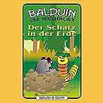 Der Schatz in der Erde (Balduin der Regenwurm 7) | Sabine Fischer,Tim Thomas