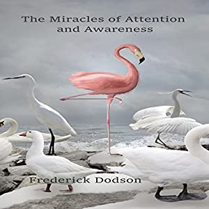 The Miracles of Attention and Awareness Hörbuch