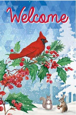 GiftWrap Etc. Welcome Winter Christmas Garden Flag - 12