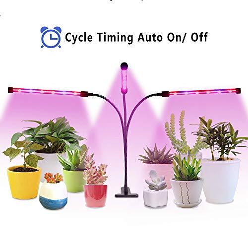 Best Led Grow Light Pot