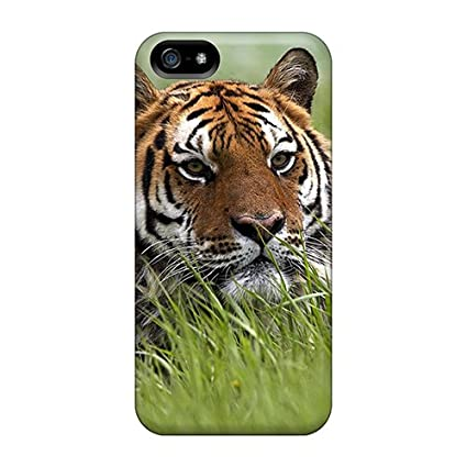 Amazon.com: Quality FancyChoice Case Cover With Tiger In The ...