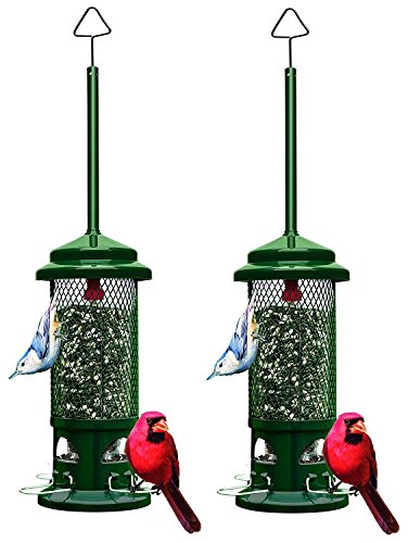 """Squirrel Buster Standard 5""""x5""""x21.5""""  Wild Bird Feeder with"""