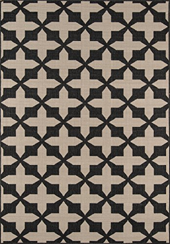 Momeni Rugs BAJA0BAJ12CHR2346, Baja Collection Contemporary Indoor & Outdoor Area Rug, Easy to Clean, UV protected & Fade Resistant, 2'3