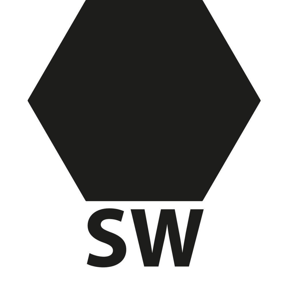 Schlossschraube mit Mutter DIN 603 M8 x 120 mm Stahl verzinkt SW13 21 St/ück