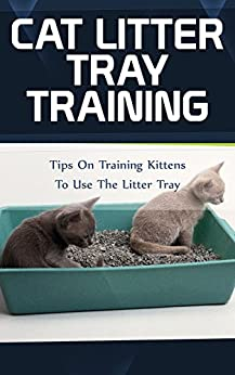 Cat Litter Tray Training: Tips On Training Kittens To Use The Litter Tray