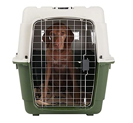 Perfect for Travelling by Train or Car Size 6-90 x 60 x 68 cm Quality Plastic Transport Crate