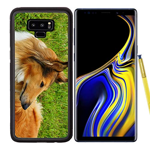 (Liili Premium Samsung Galaxy Note 9 Aluminum Backplate Bumper Snap Case Image ID: 18794069 Portrait of Sable and White Long haired Rough Collie Dog)