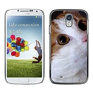 Paccase / SLIM PC / Aliminium Casa Carcasa Funda Case Cover - Cymric American Bobtail Somali Cat - Samsung Galaxy S4 I9500