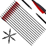 Narchery 12 Pcs Archery Carbon Hunting Arrows, 31'' Bow and Arrows with Removable Tips, 350 Spine Practice Arrows for Recurve Bow, Compound Bow, Long Bow