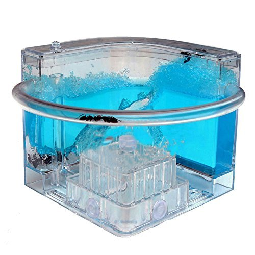Forin Ant Nursery Castle Farm Maze with Feeding System Live Ant Viewing Habitat Big Size Color Blue