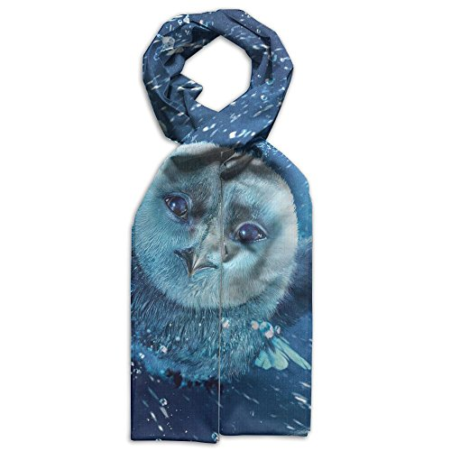 Custom Cartoon Owls Children's Scarf Novelty Scarf And Glasses Costume (Owl Glasses Costume)