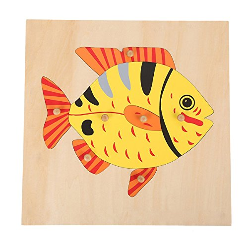 - Montessori Wooden Materials Fish Puzzle for Early Preschool Learning Toy