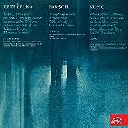 Stála Kačenka u Dunaja. Ballad for Contralto and Orchestra to the Words of Folk Verse