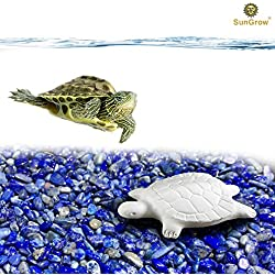 Turtle Water Conditioner by SunGrow – Protects Turtles, Amphibians & Reptile Pets from Salmonella - Contains Calcium for turtle Shell Development - One Block Sufficient for 60 Days