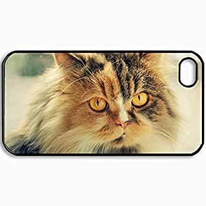 Personalized Protective Hardshell Back Hardcover For iPhone 4/4S, Cat Cat Kote Snout Fur Fluffy Design In Black Case Color