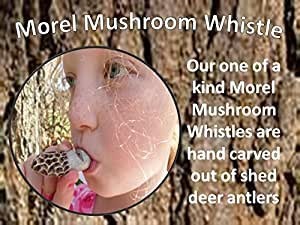 Amazon Com Fantastic Realistic Morel Mushroom Whistle