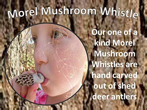 (Fantastic Realistic Morel Mushroom Whistle hand carved from our talented artist)