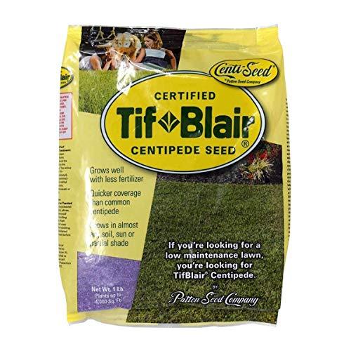 (TifBlair Centipede Grass Seed)