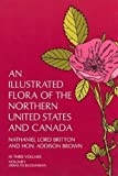 img - for An Illustrated Flora of the Northern United States and Canada, Vol. 1 by Nathaniel L. Britton (1970-06-01) book / textbook / text book