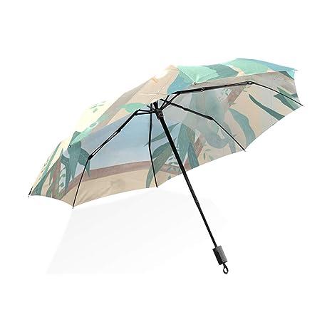 ISAOA Paraguas de Viaje automático, Compacto, Plegable, para Dibujo de Ballena, Resistente