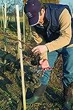 Felco 11 Narrow Blade Shear Pruner