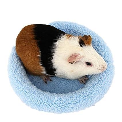 Amazoncom Bwogue Hamster Bed Round Velvet Warm Sleep Mat Pad For