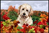 Cheap Best of Breed Goldendoodle Fall Leaves Floor Mat
