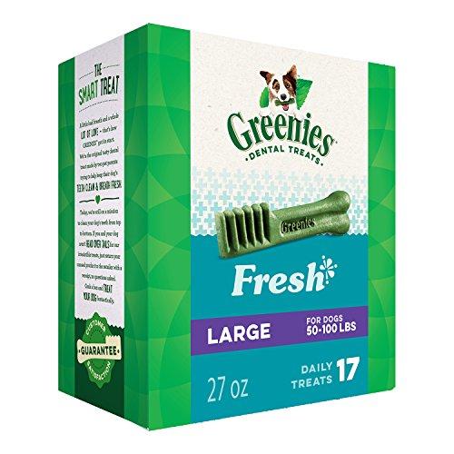 Greenies Dental Dog Treats, Large Size, Fresh Flavor (27 Ounces 17 Treats) Greenies Dog Dental Chews: For Clean Teeth and Healthy Gums - Mint Dog Chews