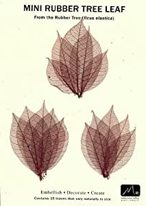Skeleton Leaves- Pack of 15 Maroon Mini Rubber Tree Leaves