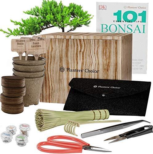 Bonsai Starter Set + Werkzeugset - Das komplette Set zum einfachen Anbauen von 4 Bonsai-Bäumen aus Samen mit umfassendem Leitfaden und Markierungsschilder aus Bambus - Einzigartige Geschenkidee