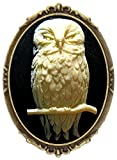 Owl Brooch Pin Rose Decor Antique Brass Animal Wild Bird Fashion Jewelry Pouch for Gift