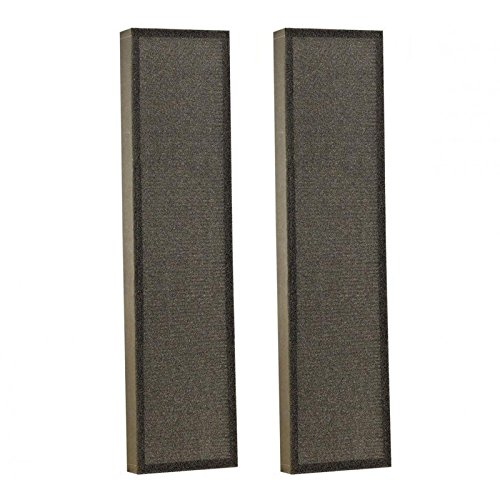 Runclean 2 Pack Air Purifiers True HEPA Filter Replacements for GermGuardian FLT4825 Compatible AC4300,AC4800,4900 Series, Filter B Germ Guardian Filters