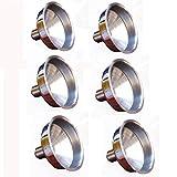 Botrong 6Pcs Durable Stainless Steel Mini Funnel for Essential Oil Bottles / Flasks